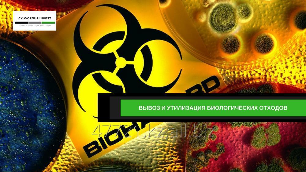 Заказать Утилизация биологических отходов