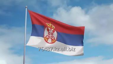 Заказать Перевод с сербского языка на русский и наоборот