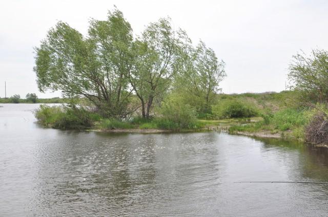 Заказать Эко-отдых и эко-рыбалка!!! 8 км от г. Костаная