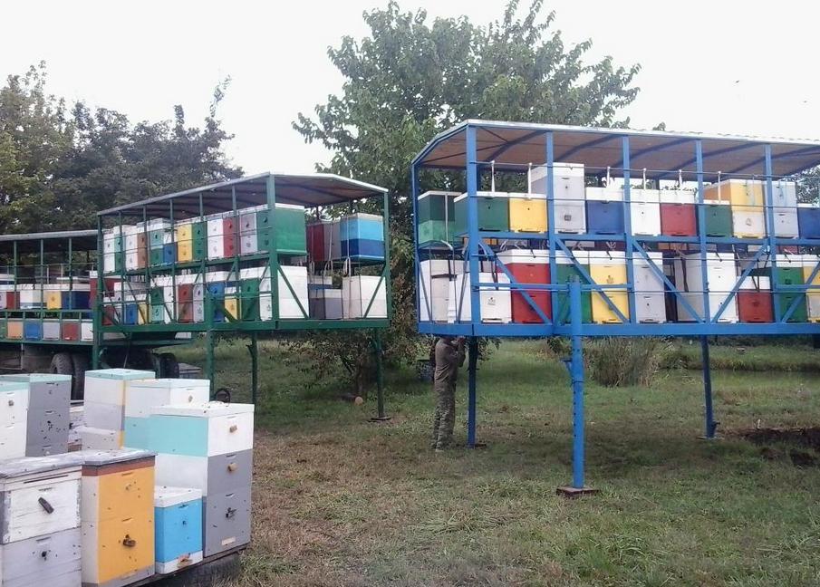 Заказать Перевозка пчёл на медосбор
