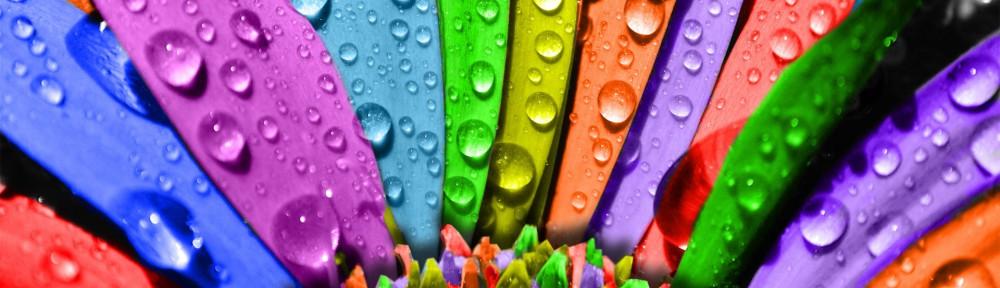 Заказать Печать полноцветная