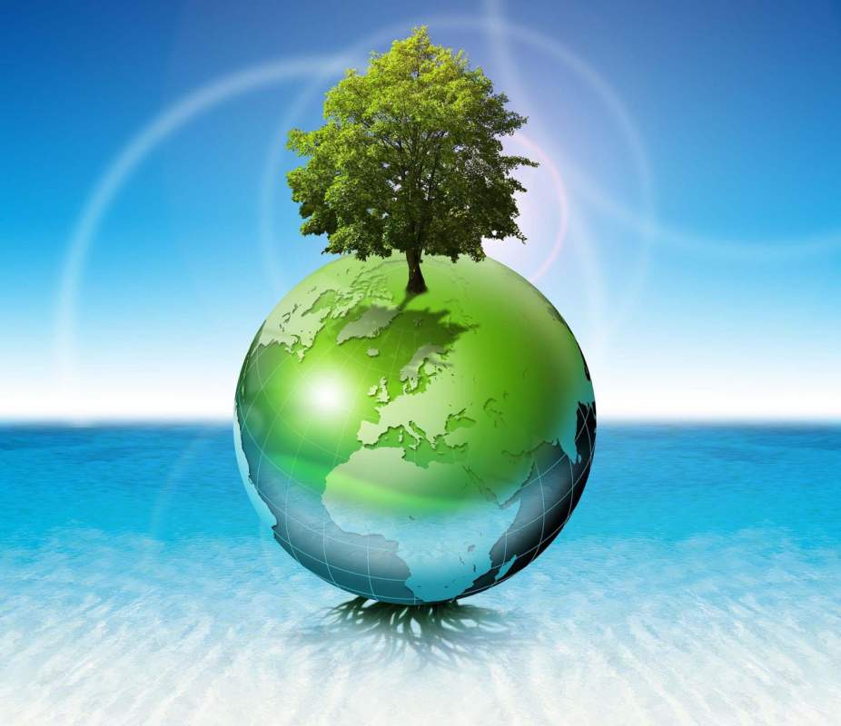 Разработка проектов раздела охраны окружающей среды (РООС)