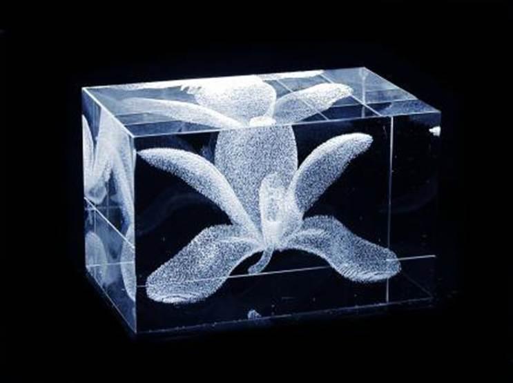 Заказать Гравировка стекла 3D