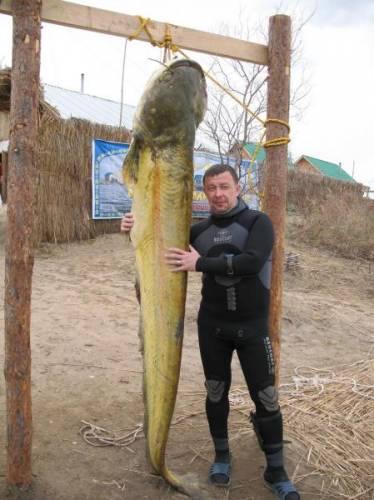 Заказать Рыбалка, Туры на рыбалку