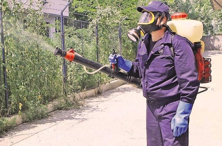 Заказать Дезинсекция, уничтожение вредных насекомых