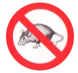 Order Extermination of rats