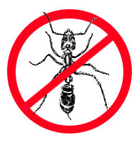 Order Extermination of ants