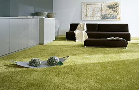 Химчистка ковров ковровых покрытий
