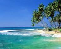 Заказать Шри-Ланка