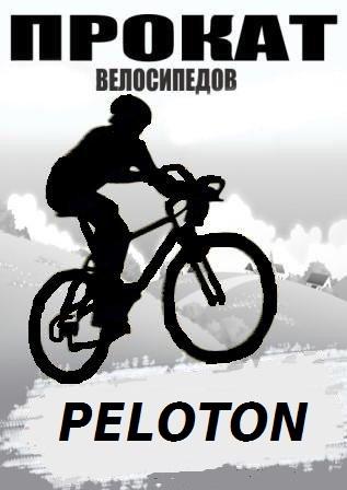 Заказать Прокат, аренда гоночных велосипедов
