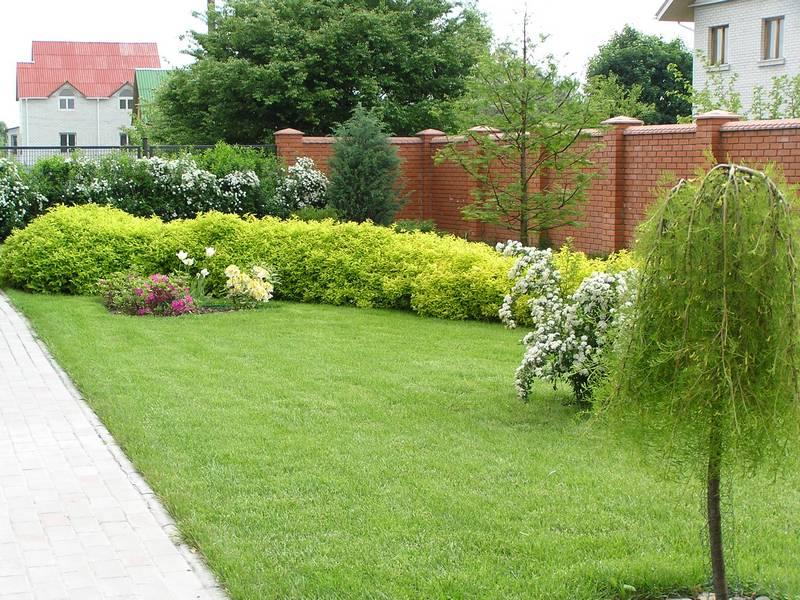 ������ ������������ ������� Mon Jardin