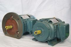 Professional repair of electric motors and