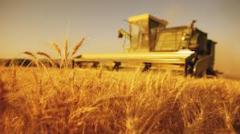 Business planning in the agricultural sphere, at