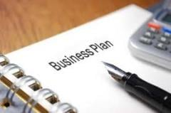 Development of business plans of the feasibility