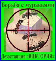 Fight against ants, disinsection, deratization,