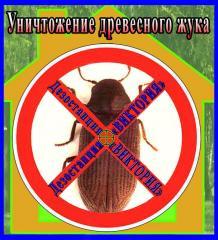 Уничтожение древесного жука (караеда)