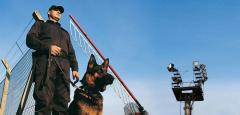 Охрана с собаками в Астане