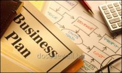 Business planning, Business plan, Almaty