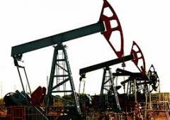 Курсы нефтяного дела