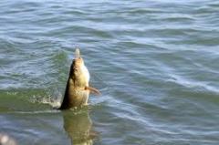 Fishing Kazakhstan