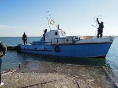 Fishing, Fishing on Balkhash