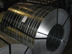 Steel metallography