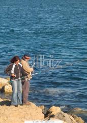Fishing on the fishing Neptune base
