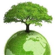 Создание единой системы мониторинга выбросов