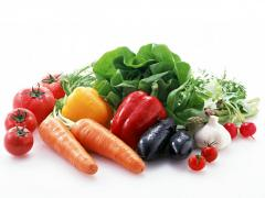 Development of business plans of a vegetable