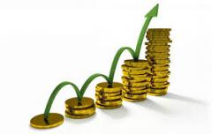 Development of business plans cultivation of