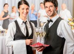 Development of business plans of hotels and
