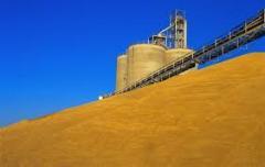 Хранение зерна, пшеницы