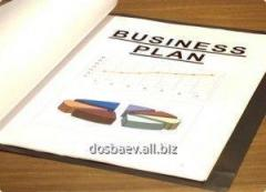 Writing, drawing up business plans in Almaty