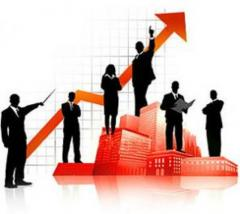 Development of strategy of business, the Business