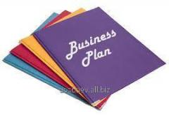 The business plan for internal use, not less than