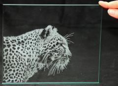 Лазерная гравировка по стеклу , нанесение рисунка