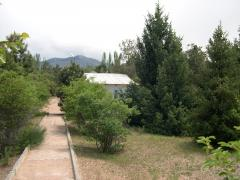 Salim's boarding house