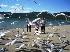 Kazakhstan tours: The lake Pike - Sanatorium Green