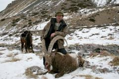 Trophy hunting for the Siberian goat for