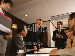 Development of the business plan according to the