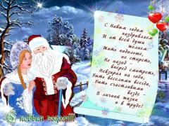 Дед Мороз и Снегурочка на корпоратив! Ведущий, тамада на корпоратив!