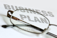 Development of business plans through passage in