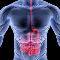 Gastroenterology in Astana