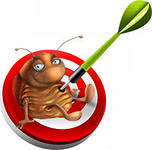 Services in destruction of bed bugs