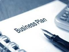 The business plan in the industry sphere