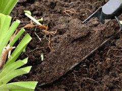 Improvement of a fertile layer of the earth