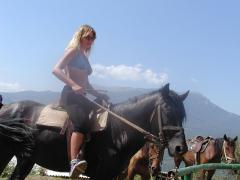 Horse tourism