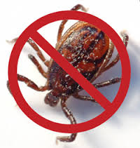 Fight against pincers