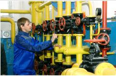 Services in operation of systems of gas supply