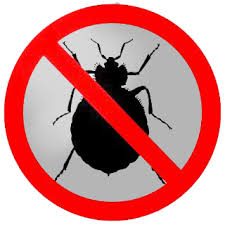 Elimination of bed bugs
